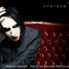 Marilyn Manson  This Is the New Shit (Proteus noir remix)