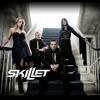 Skillet - Hero - Awake (Remix)
