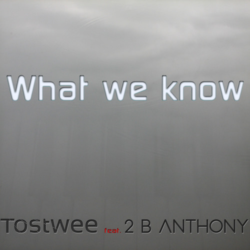 Tostwee - What we know feat. Backstrom