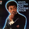 Johnnie Taylor - Disco Lady (B-Sides Dont let it play Remix)