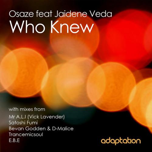 Osaze Feat Jaidene Veda - Who Knew (Bevan Godden & D-Malice Afro Treatment)