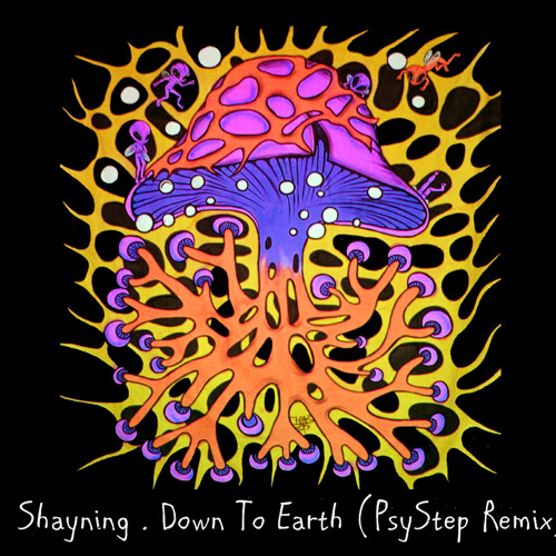 Shayning - Down To Earth [Psystep]