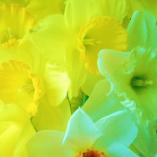 Senti u veranu* feel the spring * fühle den Frühling by galaxia tuani