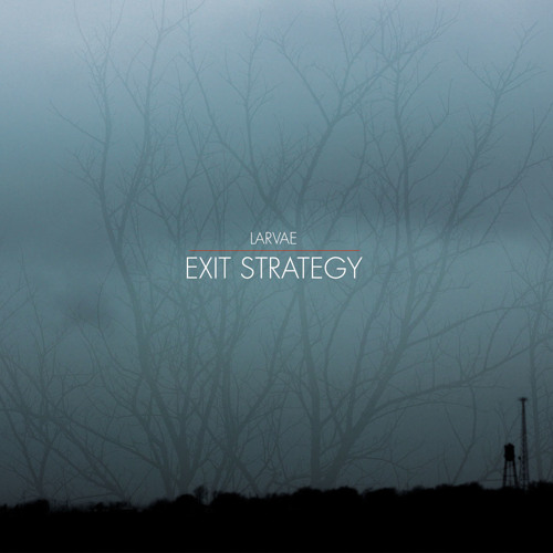 Larvae - Exit Strategy