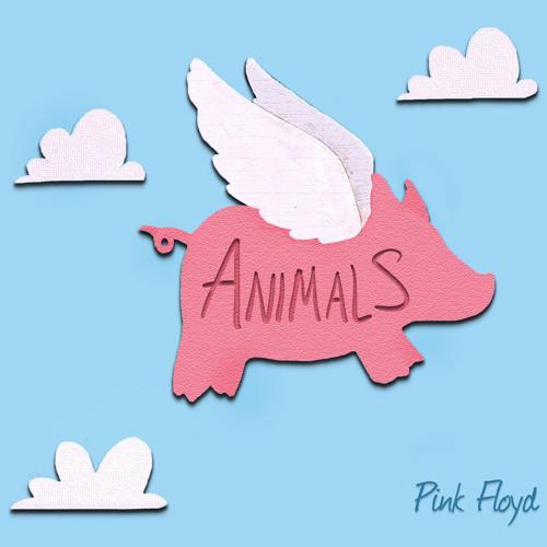 Pink Orb's Animals