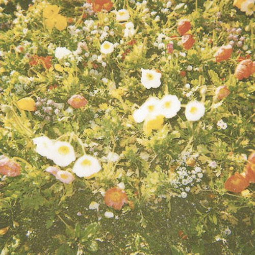 Wallflower - Cure Your Heart