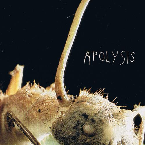 APOLYSIS [TAPE PREVIEW]