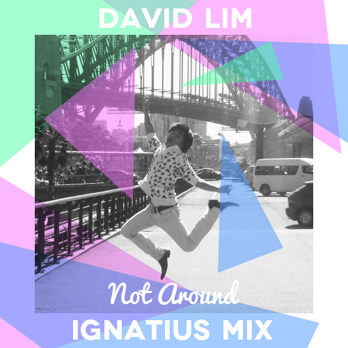 David Lim - Not Around (Ignatius Mix)