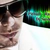 Pitbull feat. Marc Anthony - Rain Over Me ( Dj Sush Remix )