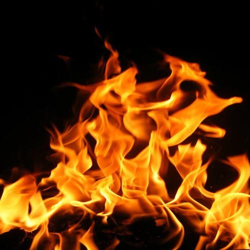 Fobi vs Zaiklophobia - Fireplace Fobi - Organic Sources ( No Comment Records )