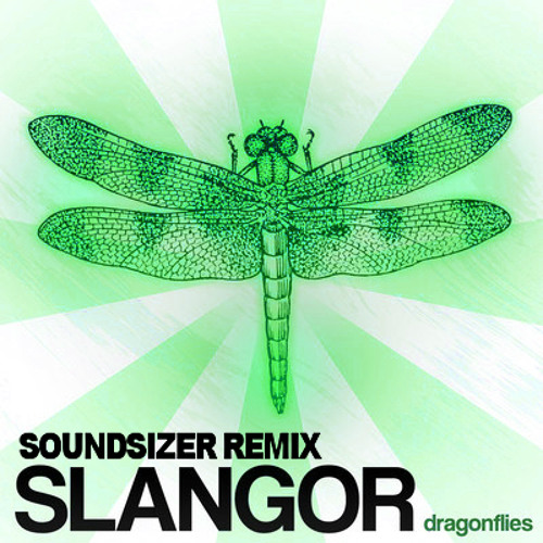 Dragonflies (Soundsizer Remix) by Slangor