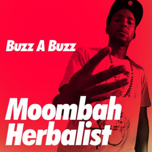 Buzz A Buzz - Moombah Herbalist