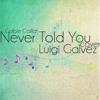 I Never Told You (Colbie Caillat) Cover - Luigi Galvez