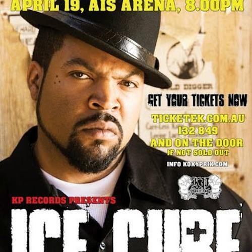 ICE CUBE SET