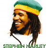 Hey baby (stephen marley remix)