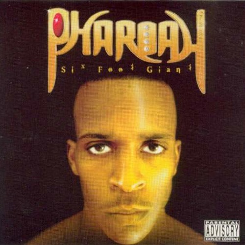 Pharoah Of Street Military - They Gonna Learn(Slowed and Throwed)BY: DJ BUD