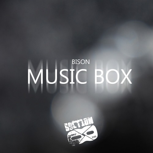 BISON - QUEST (SECTION8 RECORDINGS)**RELEASED**