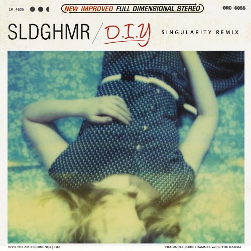SLDGHMR - D.I.Y (Singularity Remix)