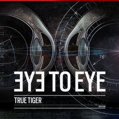 True Tiger - Eye To Eye EP Preview
