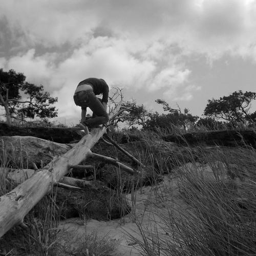 sebastian schimmel - ocean's edge