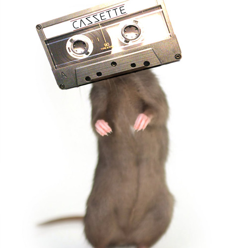 PREVIEW: CAZZETTE - The Rat (Original Mix)