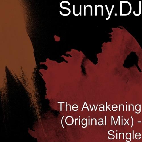 The Awakening (Original Mix)