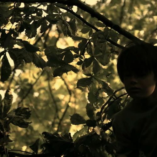 Naissance d'un chef - 2 - Dans la forêt