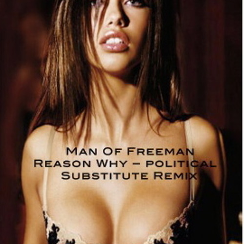 !!!FREE DOWNLOAD!!! Man Of Freeman-Reason Why (Political Substitute Remix)