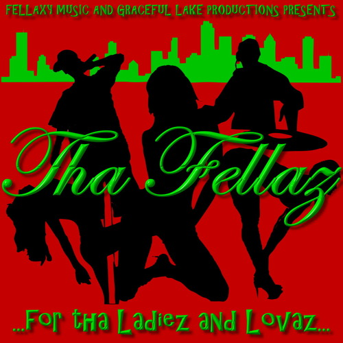 12 Tha Fellaz - Elektrifiziert feat. Bass-D