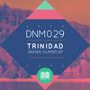 DNM029 Trinidad - Indian Summer EP (DubNoir Music)