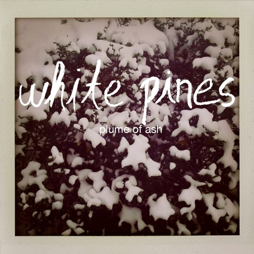 "White Pines - ""Bluebird"""