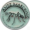 Ants Marching - Antz Marching Demo 2012