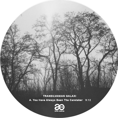 Acido Records 010, Transilvanian Galaxi. Snippets, available on vinyl now!