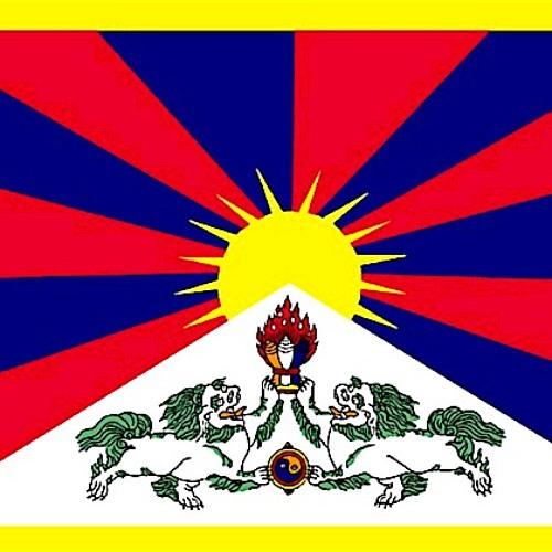 Unit Blue - Peace for Tibet ( Dj Disse  - Nemesis Remix - )