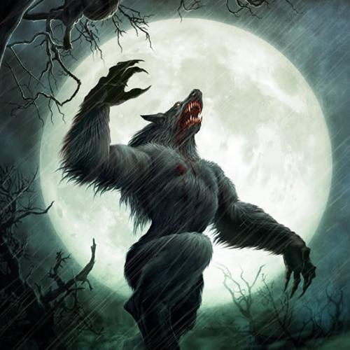 Alan Wilkis - Wolfman