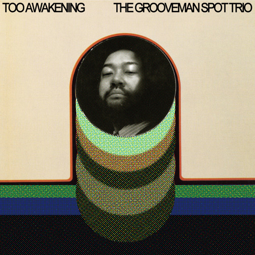 grooveman Spot / TOO AWAKENING