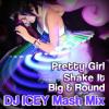 Pretty Girl Shake It Big 'n Round (DJ Icey Mash Mix)