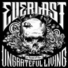 Everlast - Little Miss America (Acoustic) (JRE)