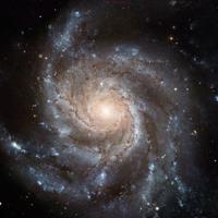 Stardust (instrumental)