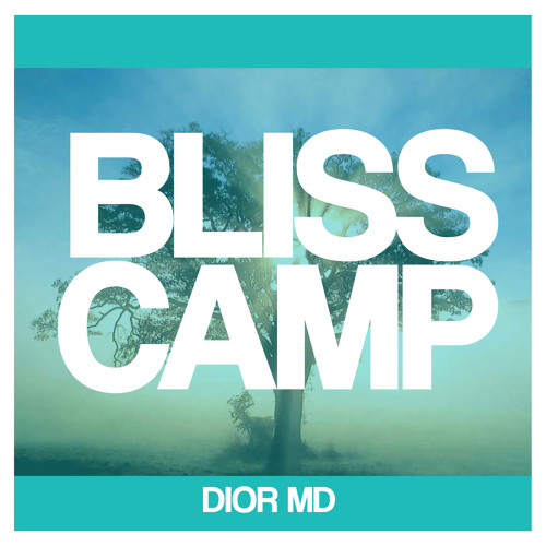 Bliss Camp (Original Mix) !!FREE DOWNLOAD!!