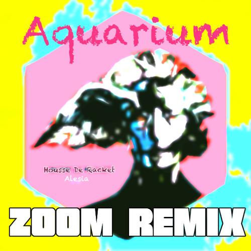 Housse De Racket-Aquarium (Zoom Remix)