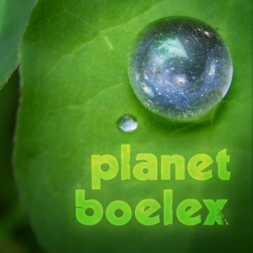 Planet Boelex with Lisa's Antenna - Walk Ahead (Recue remix)