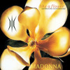 Madonna | Like a Flower (Earthonika Instrumental)