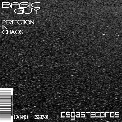 Perfection in Chaos (Original Mix)