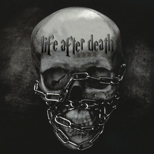 BOMBASTARD - LIFE AFTER DEATH (original mix)