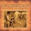 Didgeridoo - Australian Aboriginal