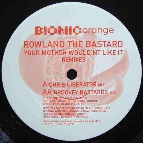 Your Mother Wouldn't Like It RMX (Groovey Bastards) BIO-002