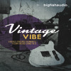 Vintage Vibe Demo