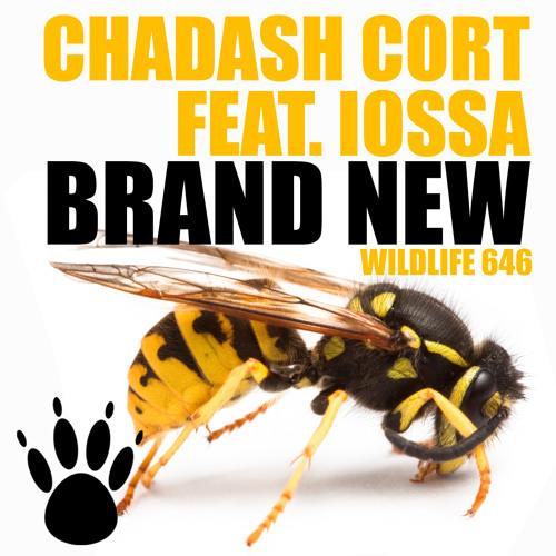 Chadash Cort ft.Iossa - Brand New (Radio Edit)