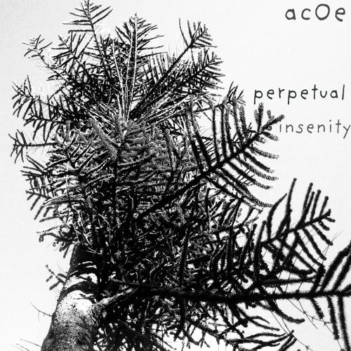 Perpetual Insenity